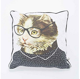 Coussin chat chez Urban Outfitters